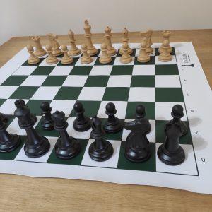 Jogo de peças de xadrez profissional